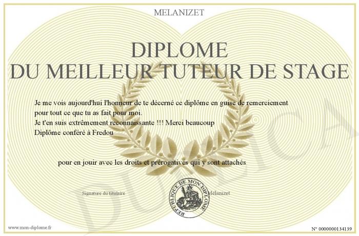 Diplome Du Meilleur Tuteur De Stage