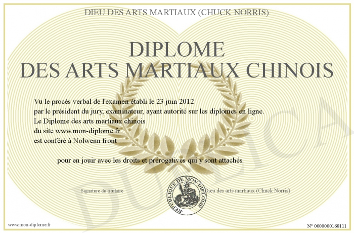 Diplome des arts martiaux chinois for Arts martiaux chinois