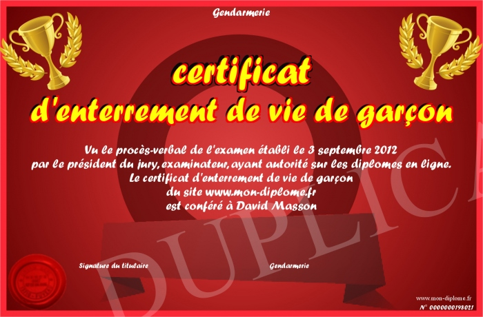 certificat d enterrement de vie de garcon. Black Bedroom Furniture Sets. Home Design Ideas