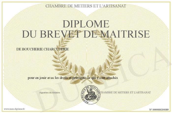 Diplome du brevet de maitrise - Chambre des metiers macon ...