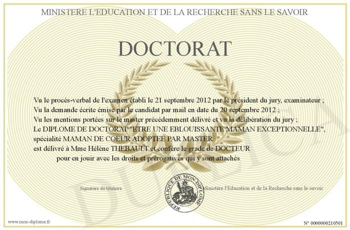dipl u00f4me du doctorat de bricolage pictures to pin on pinterest