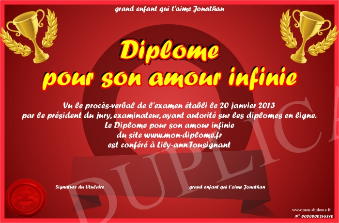 Diplome Pour Son Amour Infinie