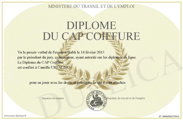 Diplome-du-CAP-Coiffure