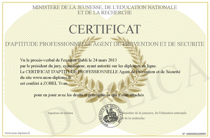 certificat d aptitude professionnelle agent de prevention