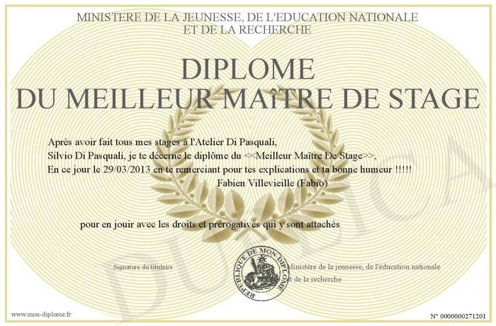 Diplome-du-Meilleur-Maitre-De-Stage