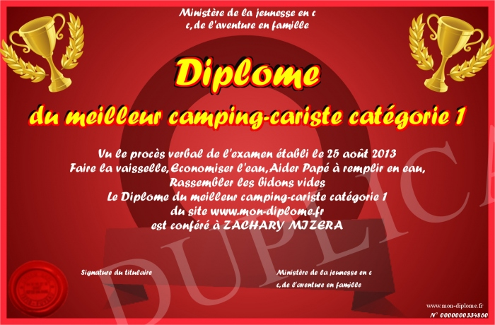 diplome du meilleur camping cariste categorie 1. Black Bedroom Furniture Sets. Home Design Ideas
