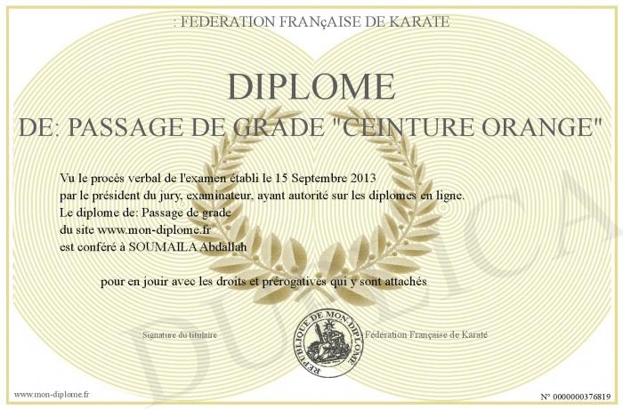 5db86a3d7f4 Diplome-de -Passage-de-grade--ceinture-orange-