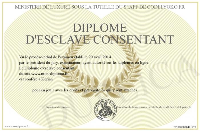 http://www.mon-diplome.fr/Diplome/700-421975-Dipl%C3%B4me%20d'esclave%20consentant.jpg