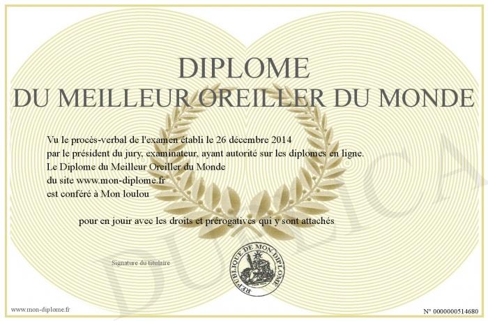 Diplome du Meilleur Oreiller du Monde