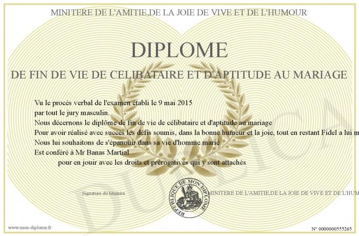 Relativ DIPLOME-DE-FIN-DE-VIE-DE-CELIBATAIRE-ET-D-APTITUDE-AU-MARIAGE VH78