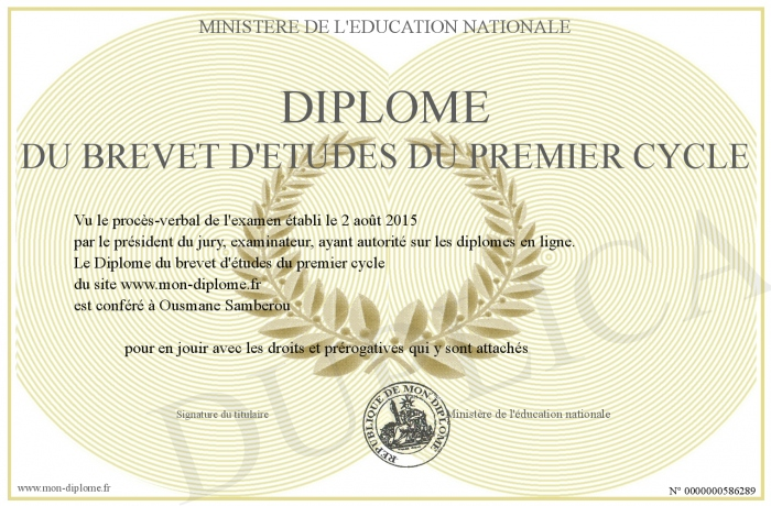diplome universitaire de premier cycle