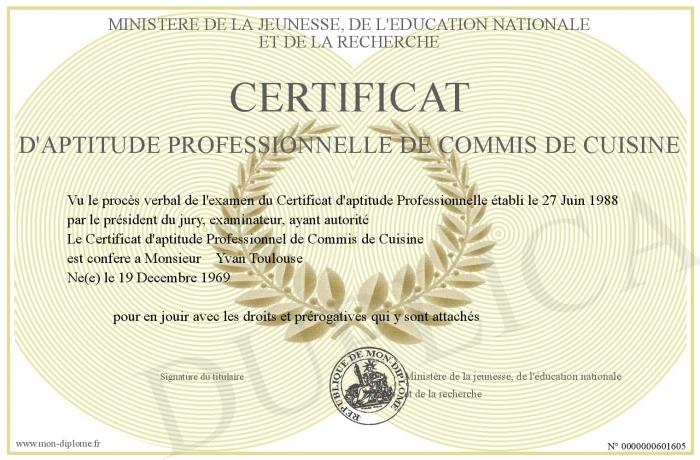 Certificat d aptitude professionnelle de commis de cuisine for Recherche commis de cuisine