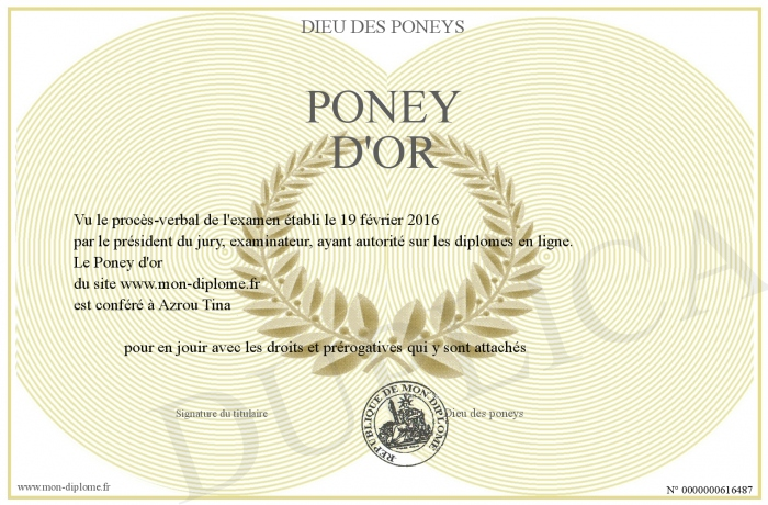 Poney d