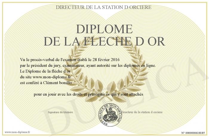 Être un maître, sans être un maître...  - Page 4 700-618185-Diplome+de+la+fleche+d+or