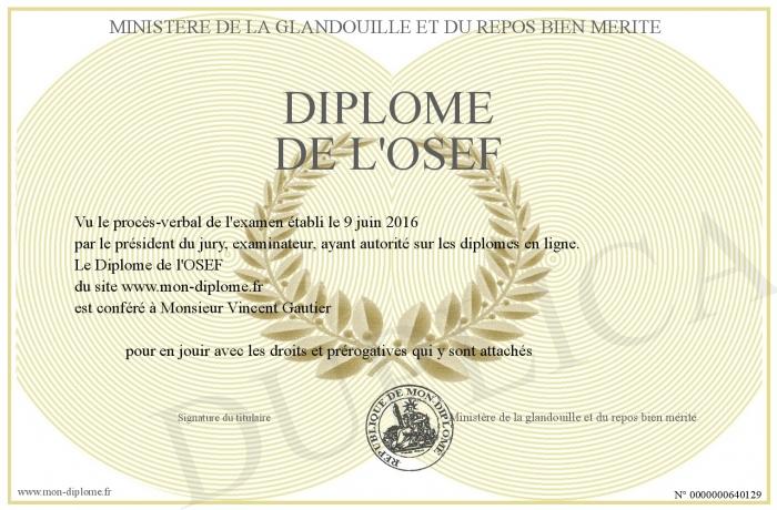 [Jeu] Association d'images - Page 3 700-640129-Diplome+de+l+OSEF