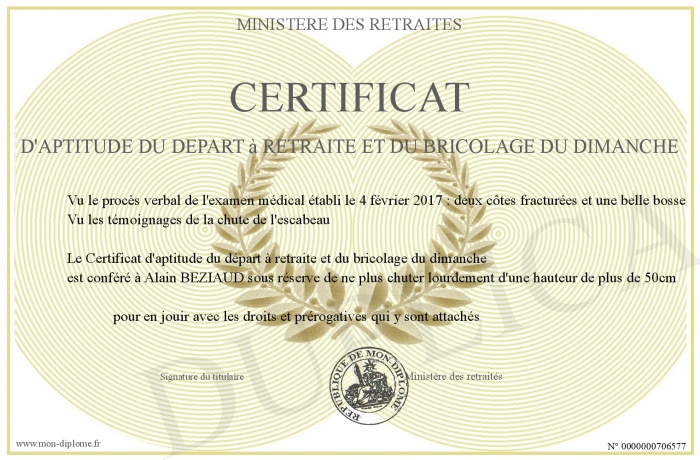 certificat d aptitude du depart a retraite et du bricolage du dimanche. Black Bedroom Furniture Sets. Home Design Ideas