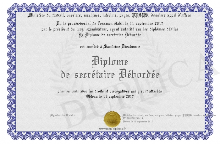 Diplome De Secretaire Debordee